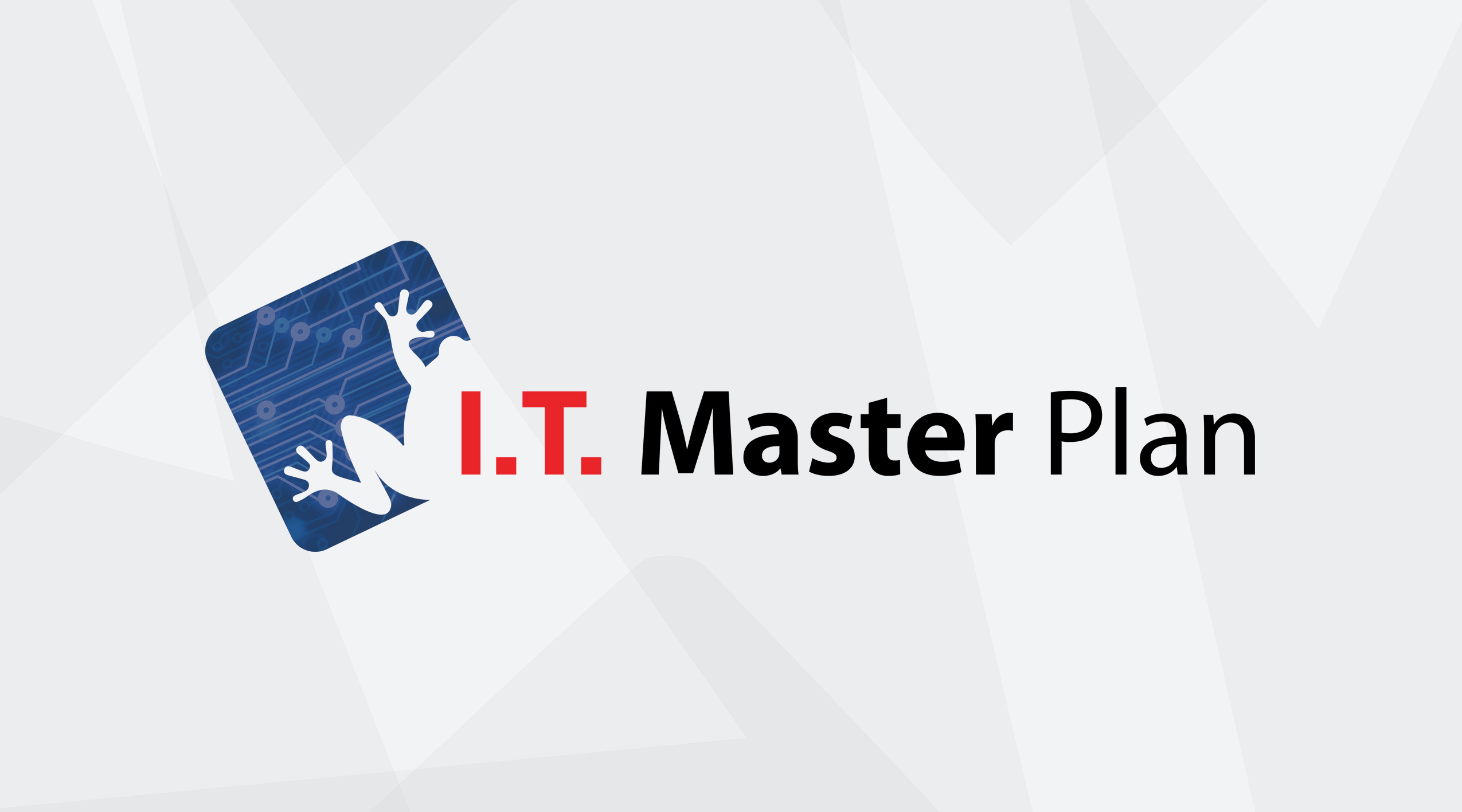 IT Master Plan: Initial Consultation, Step 1